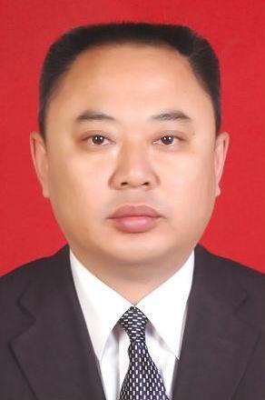 区委常委、组织部部长:付斌